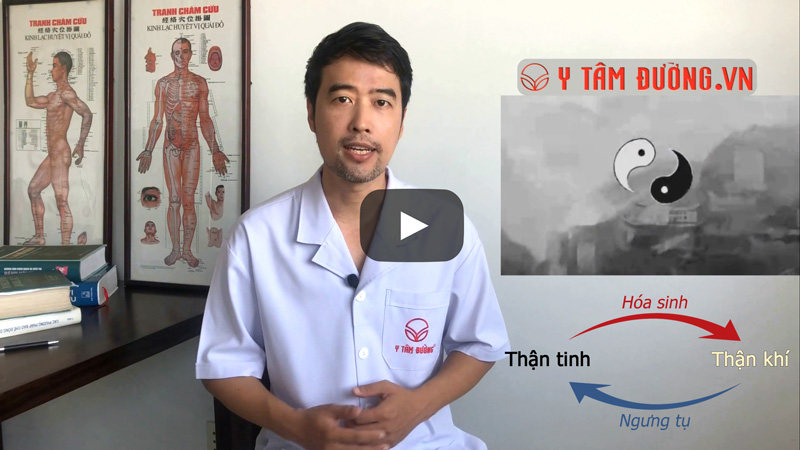 phương pháp chữa yếu sinh lý bằng Đông y