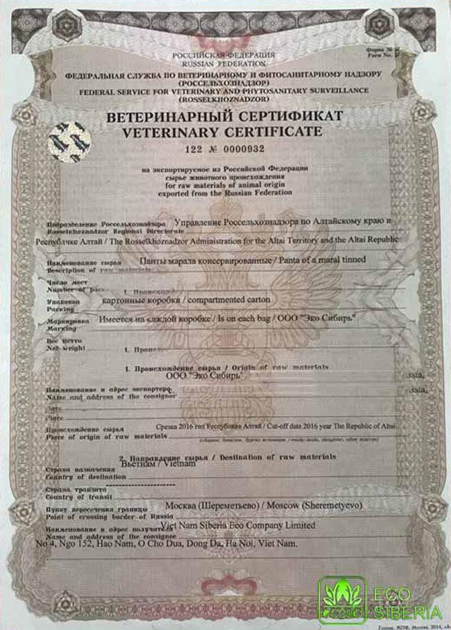 Chứng nhận kiểm dịch của LB Nga về nguyên liệu sừng hươu dùng để sản xuất CBLSiberia